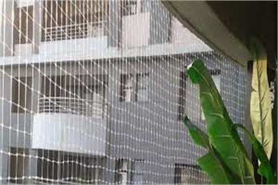 Anti bird Netting services in Sighgad Road Pune