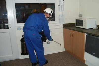 Residential Pest Control in Pune